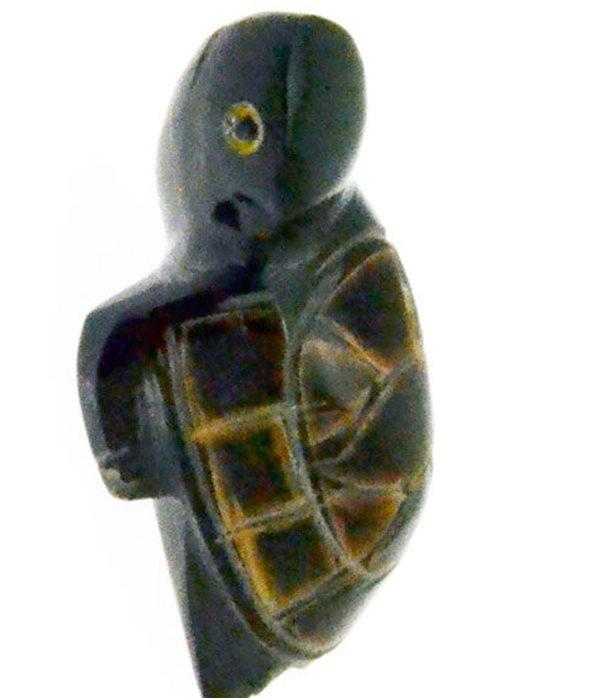 Tartaruga corno